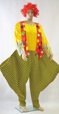 Heren clownskostuum met pruik